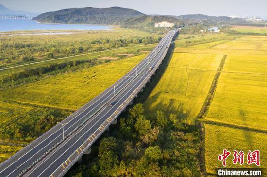 Along China's Expressways: Jiujiang-Jingdezhen expressway runs through golden paddy fields