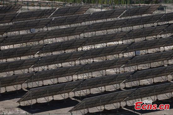New energy increases locals' income in Xinjiang's Ulugqat