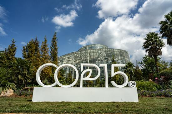 COP15 successful, China takes lead in biodiversity, says UN official