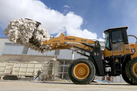 In Xinjiang, cotton grower finds success
