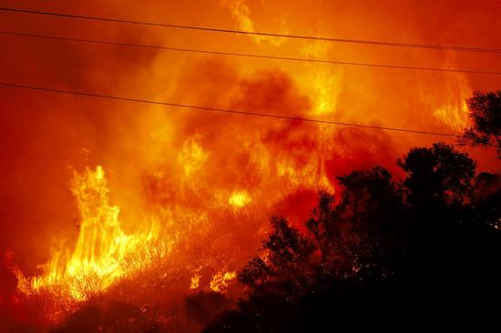 Wildfire in U.S. produces widespread ecological damage to river system: survey