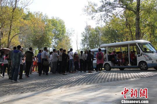 在白沙湖景区,游客排队乘坐区间车。 杨东东 摄