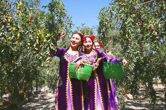 图为各族枣农身着盛装采摘红枣,表达丰收的喜悦。  赵学龙摄