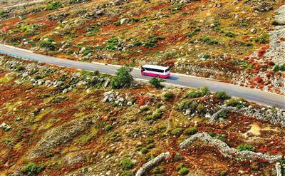一辆旅游大巴行驶在贺兰山秋色中。记者 李靖 摄