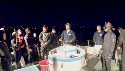 夜潜抓龙虾活动颇受华人潜水爱好者欢迎(美国《世界日报》/陈开 摄)