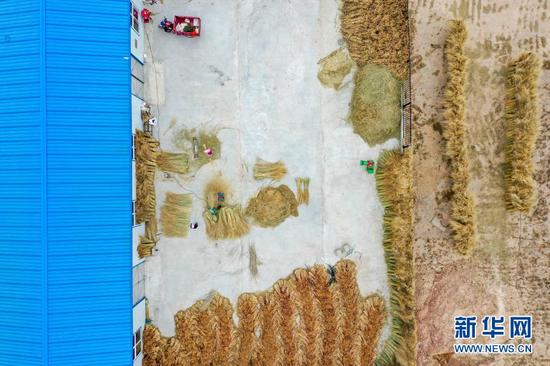 李耀梅和工人在扶贫工厂扎制扫帚(10月27日摄,无人机照片)。新华社记者 王鹏 摄