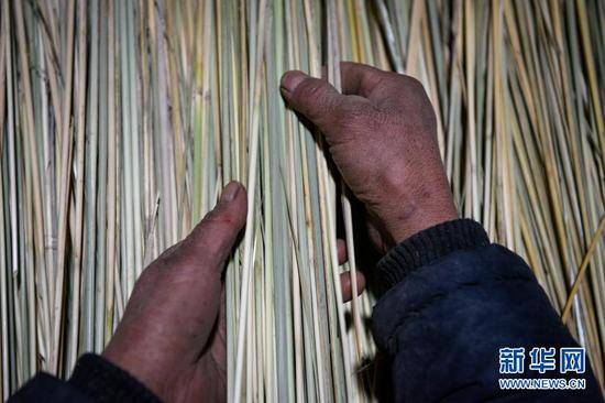 李耀梅在整理芨芨草,她的双手因为常年割草、扎扫帚布满了老茧(10月27日摄)。新华社记者 冯开华 摄