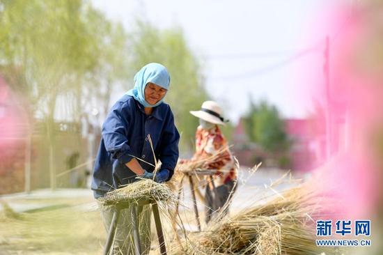 李耀梅(左)和工人在加工制作扫帚的芨芨草(6月10日摄)。新华社记者 冯开华 摄