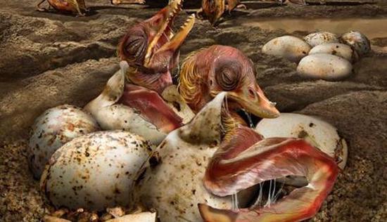 全球首次!新疆发现3D翼龙胚胎化石