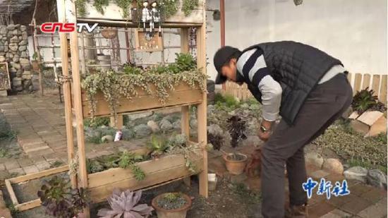 """二度创业的新疆小伙利用废物种出""""多肉""""植物"""