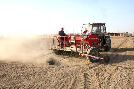 新疆南部县域:农民田间地头忙春耕
