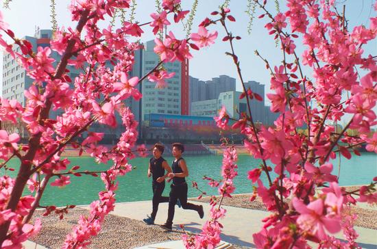 新疆库尔勒:柳绿花艳 踏青赏景正当时