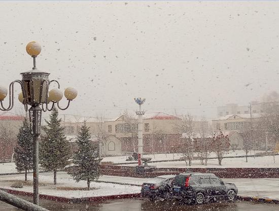 新疆北部多地降雪 网友:一遍遍雪花,不舍的冬