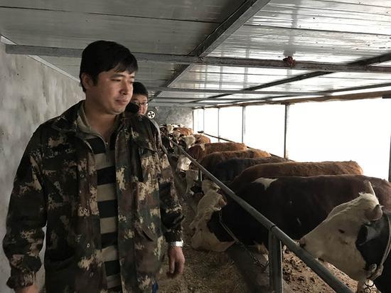 村肉牛养殖合作社