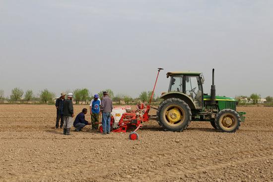 塔吉克斯坦中泰(哈特隆)新丝路农业产业示范园区项目在农行新疆兵团分行的支持下,不断发展壮大。李霄 摄
