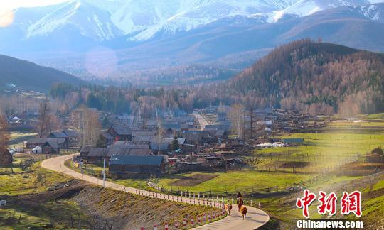 """新疆白哈巴村铺""""绿毯""""展清新脱俗之美"""