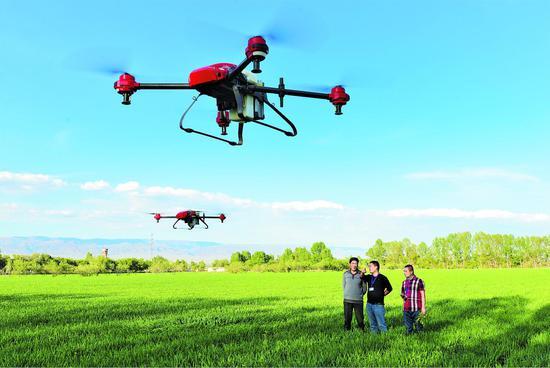 新疆:无人机植保受欢迎