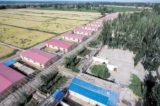 伽师县克孜勒博依乡阿亚格乔拉克村建好的安居房(摄于6月9日)。 新疆日报记者谢龙摄