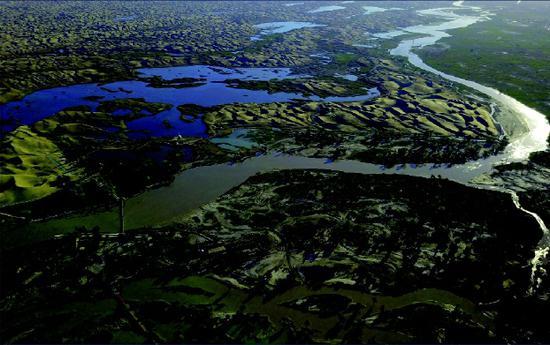新疆塔里木河两岸绿色植被逐渐恢复