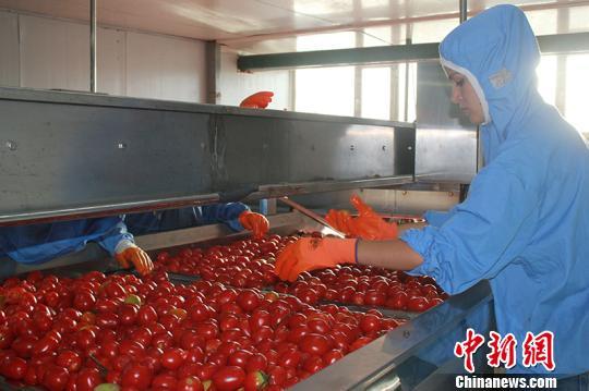 新疆兵团精准扶贫 接收贫困劳动力有组织转移务工就业