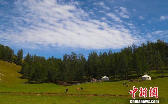 新疆哈巴河县初秋草原风光别样美