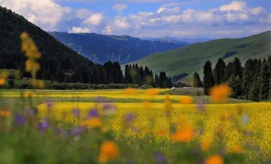 新疆巴州制定三条主题旅游线路吸引海内外游客