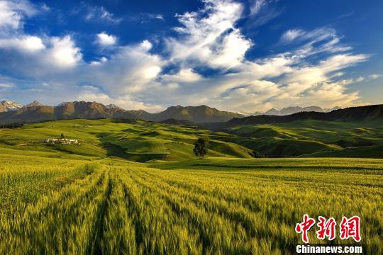 新疆奇台县将举办12项活动吸引海内外游客