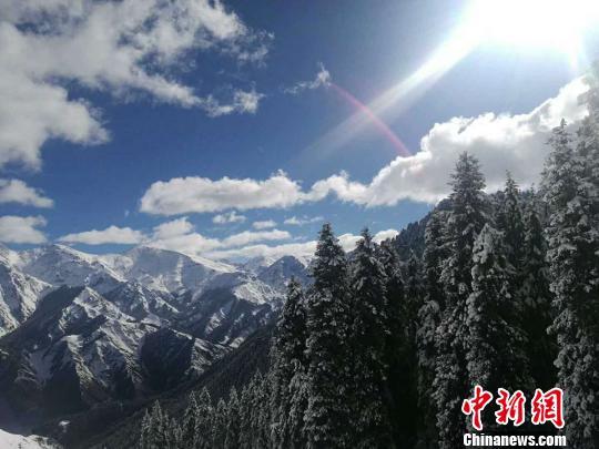 受冷空气影响新疆天山天池降雪后犹如童话世界