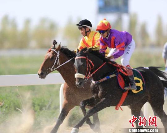 新疆库尔勒市举办赛马大会暨农牧民运动会