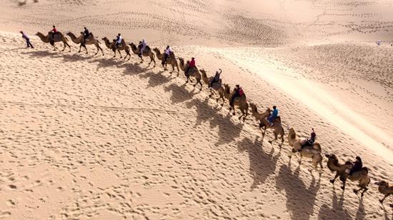 十一黄金周国家4a级景区-罗布人村寨沙漠驿站游客骑骆驼体验大漠风光.