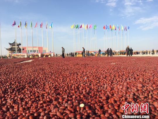 """10月27日,新疆喀什地区麦盖提县举办""""灰枣文化旅游节"""". 勉征 摄"""