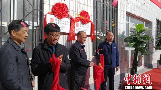 轮台县举办当代书画摄影名家作品邀请展