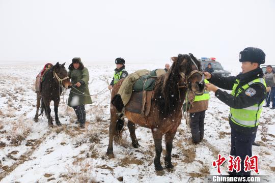 新疆阿勒泰多部门合力助牧民安全转场