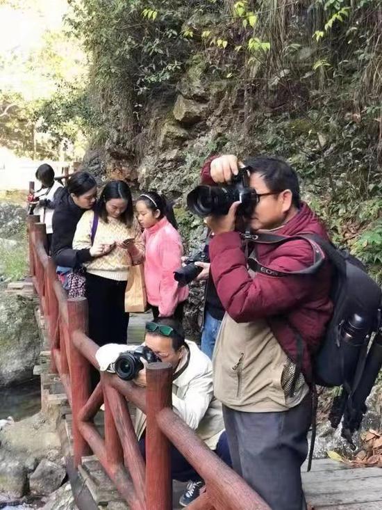眾人攝影 金東電網攝