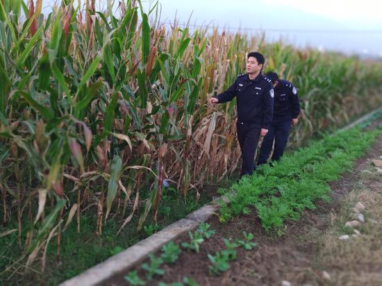 派出所民警经常走在田间地头,哪里需要就出现在哪里。东阳公安提供