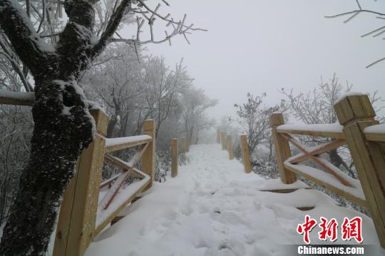 云上草原木桥雪景。 唐文铭 摄