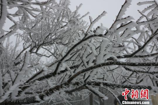 赤豆洋雪景。 唐文铭 摄