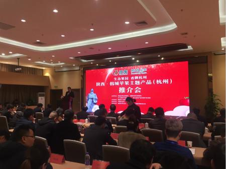 图为陕西?韩城苹果主题产品(杭州)推介会现场。王迎 摄