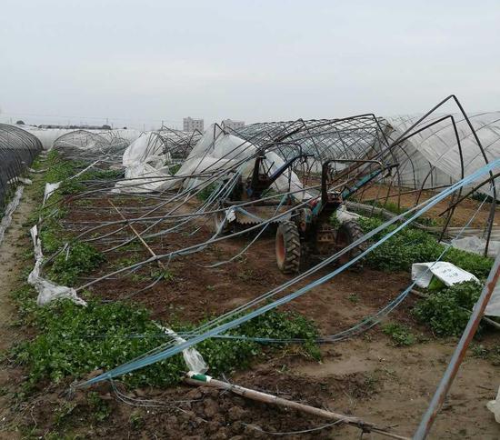 图为宁波2018年3月4日大风致大棚损毁。 宁波气象台提供