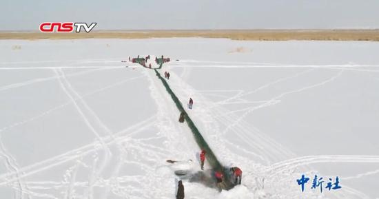 乌伦古湖渔民2公里大网捕鱼 捕大鱼放小鱼