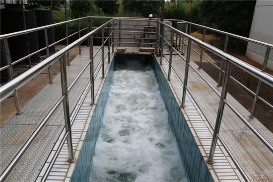 义乌污水处理厂达标排放 。 马忠勤 摄