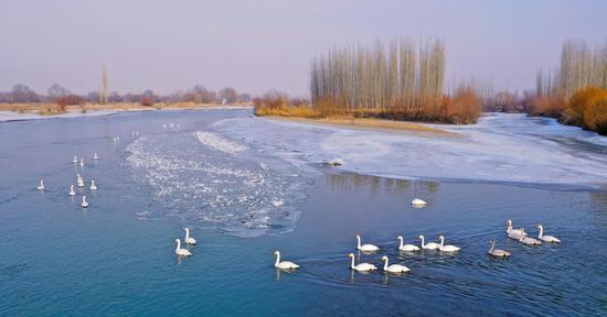 新疆和静乡村冰雪那达慕节亮点多 休闲娱乐趣味足