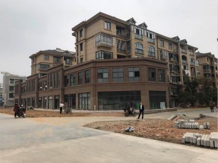 图为长兴县泗安镇三里亭村安置房旧村改造工程。稠州银行供图