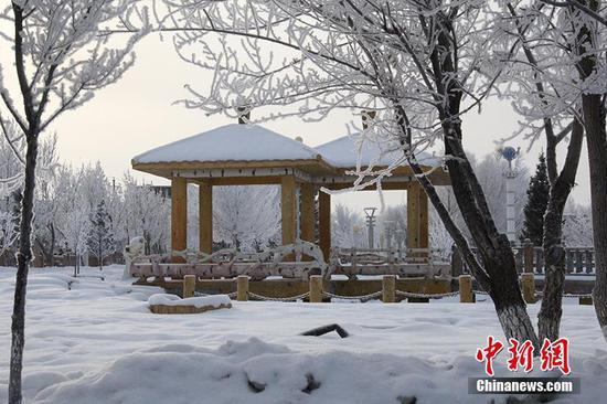 新疆北部边境团场现美丽雾凇景观