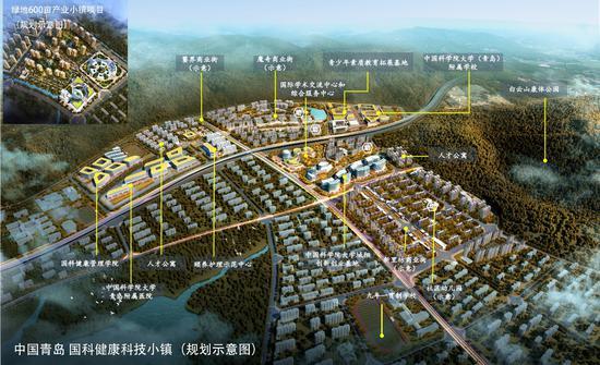 中國青島·綠地國科健康科技小鎮規劃圖  由綠地供圖