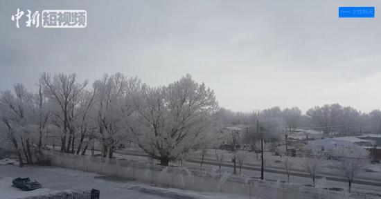 新疆阿勒泰现雾凇奇观 玉树琼花宛若仙境