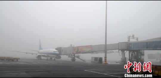 新疆多地大雾弥漫 航班取消或延误高速路封闭或管制