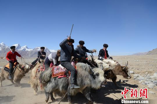 """新疆塔县民众""""肖贡巴哈尔节""""迎接春天"""