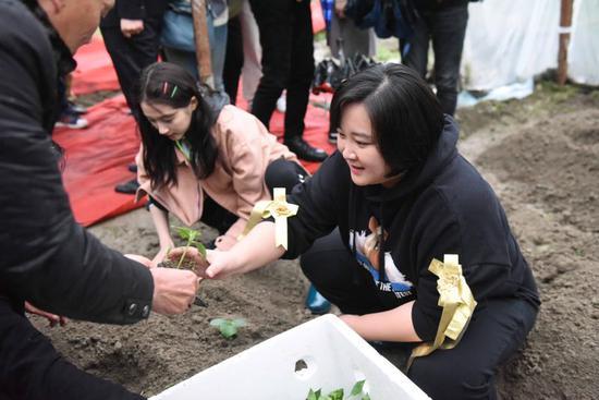 """图为""""王牌家族""""参与农作物种植活动。李晨韵摄"""