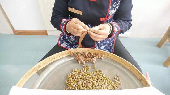 現場演示十九道古法制作鐵皮石斛的技藝。主辦方提供